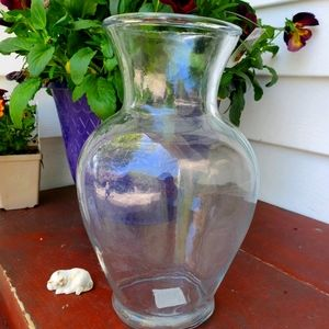 Betta Fish Glass Vase Tank